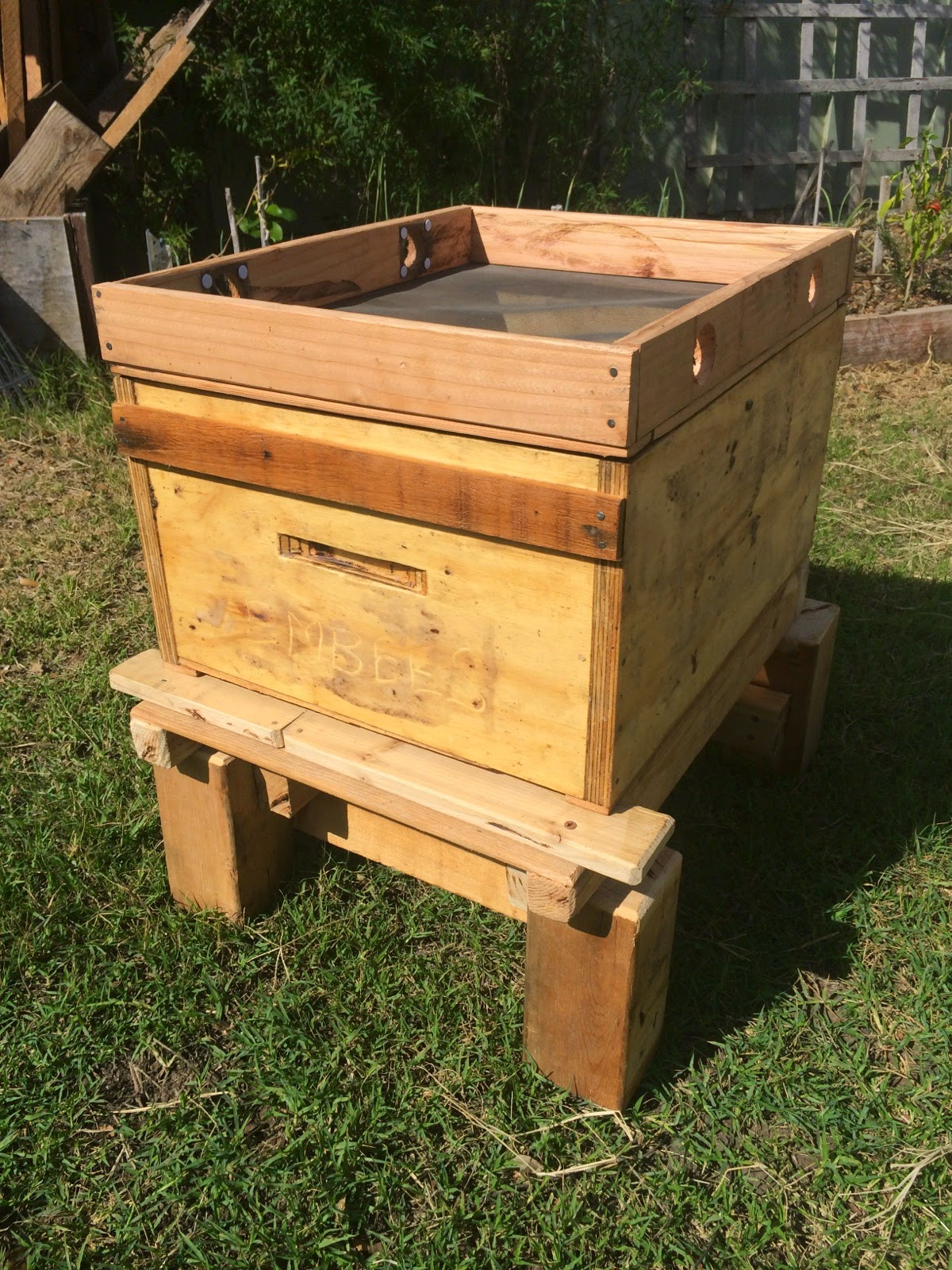 building-hives-by-hand-assembled-hive