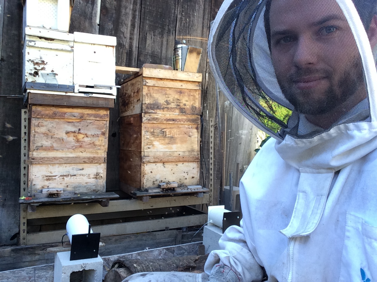 Urban Beekeeping is an exciting passion!